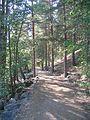 Älvleden Avesta 2008 - panoramio (2).jpg