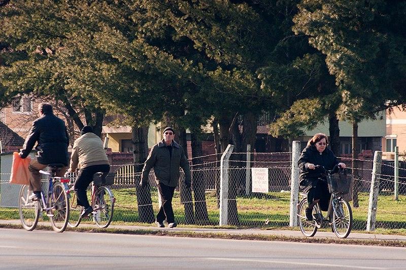 Бициклистичка стаза у Поцерској улици