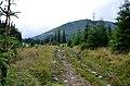 Верховинський національний природний парк 3.JPG