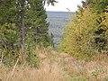 Вид с горы (внизу река Казачий Шишим). - panoramio.jpg