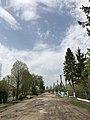 Головна вулиця с. Вівся навесні (Козівський район, Тернопільська область).jpg