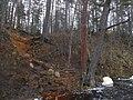 Гряда Вярямянселькя, песчаный обрыв на р.Волчья.jpg