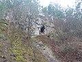 Девонські відслонення у селі Кривче.jpg