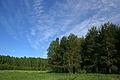 Дементьево - panoramio - Andris Malygin (1).jpg