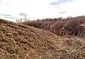 На месте раскопа - panoramio.jpg