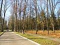 Парк курортний у смт. Шкло.jpg