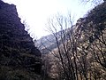 "Резерват ""Стара река"" 27.jpg"