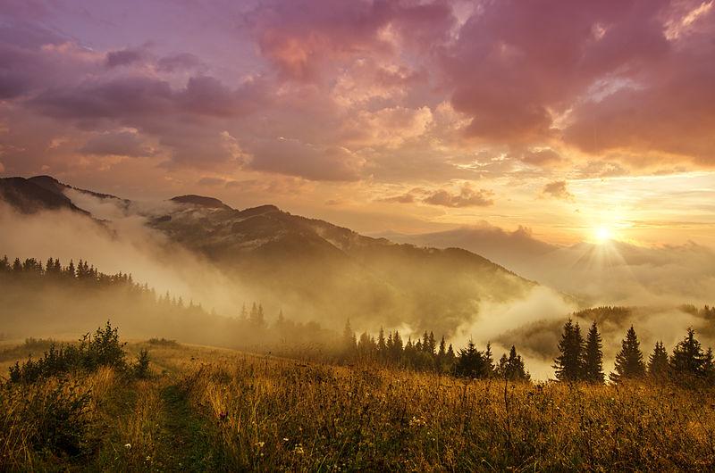 «Світанок у Карпатах», Карпатський національний природний парк. Автор фото — Roksana.Bashyrova, ліцензія CC-BY-SA-4.0