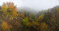 Туманний Трахтемирів.jpg
