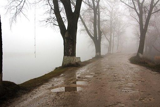 Туман4693