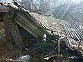Упразднённая деревня Толкочево.jpg