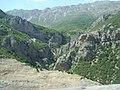 جنگل کیاسر - panoramio.jpg