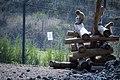 مجموعه عکس از رفتار میمون ها در باغ وحش تفلیس- گرجستان 17.jpg