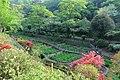 吾妻公園, Azuma Park - panoramio.jpg