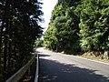 国道311号線 - panoramio.jpg