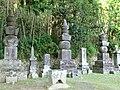 県内最大 - panoramio.jpg