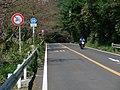 筑波山不動峠 - panoramio.jpg