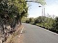 金華山ドライブウェイ - panoramio.jpg