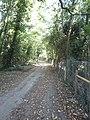 -2018-10-09 Antingham Hill, Norfolk (2).JPG