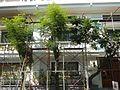04184jfIntramuros Manila Heritage Landmarksfvf 06.jpg