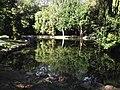 1.Біосферний заповідник«Асканія-Нова» ім. Ф. Е. Фальц-Фейна.Дендропарк.Озеро.jpg