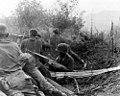 101st Airborne Division - Vietnam 01.jpg