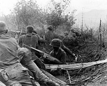 101st airborne division wikipedia men of the 1st brigade 101st airborne division fire from old viet cong trenches sciox Choice Image