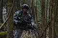12th Combat Aviation Brigade Mission Rehearsal Exercise 140315-A-DI345-008.jpg