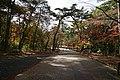 171125 Kobe Municipal Foreign Cemetery Kobe Japan07s3.jpg