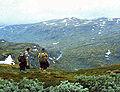 1960 Utsyn mot Storebotn.jpg