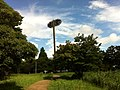 1 Todoroki, Nakahara-ku, Kawasaki-shi, Kanagawa-ken 211-0052, Japan - panoramio (1).jpg