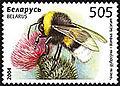 2004. Stamp of Belarus 0568.jpg