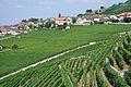 2012-08-12 10-10-10 Switzerland Canton de Vaud Rivaz.JPG