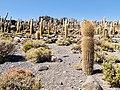 20170809 Bolivia 1524 Uyuni sRGB (37926737236).jpg