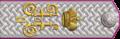4-12z. Обер-прокурор Святейшего Синода, статс-секретарь, действительный тайный советник, 1904–1917 гг.png