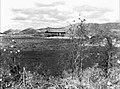54-ㅂ- 1954년 경주 안압지2.jpg