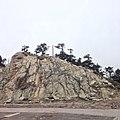 546, Taiwan, 南投縣仁愛鄉大同村 - panoramio (105).jpg