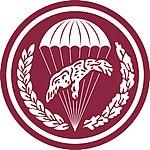 6 Brygada Desantowo-Szturmowa.jpg