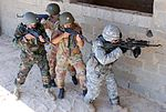 82nd Airborne Division helps train troops coalition forces in Egypt DVIDS213087.jpg