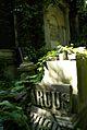 8viki Cmentarz żydowski na Ślężnej. Foto Barbara Maliszewska.jpg