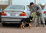 97th Security Forces Squadron dog training 120314-F-FV476-002.jpg