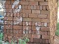 A brick array.JPG
