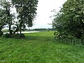 A glimpse of the Trent - geograph.org.uk - 1319055.jpg