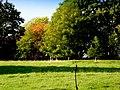 A touch of Autumn colour, near Geanies House - geograph.org.uk - 994706.jpg