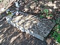 Aarne Haapakoski's Grave.jpg