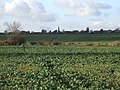 Across the fields to Greens Norton - geograph.org.uk - 1572816.jpg