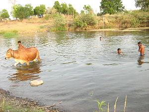 Adan River - Adan River