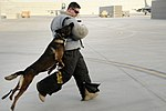 Afghanistan AEF 2012 120722-F-VN552-033.jpg