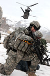 Air assault mission DVIDS233430.jpg