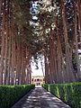 Akbarieh Garden Axe2.jpg
